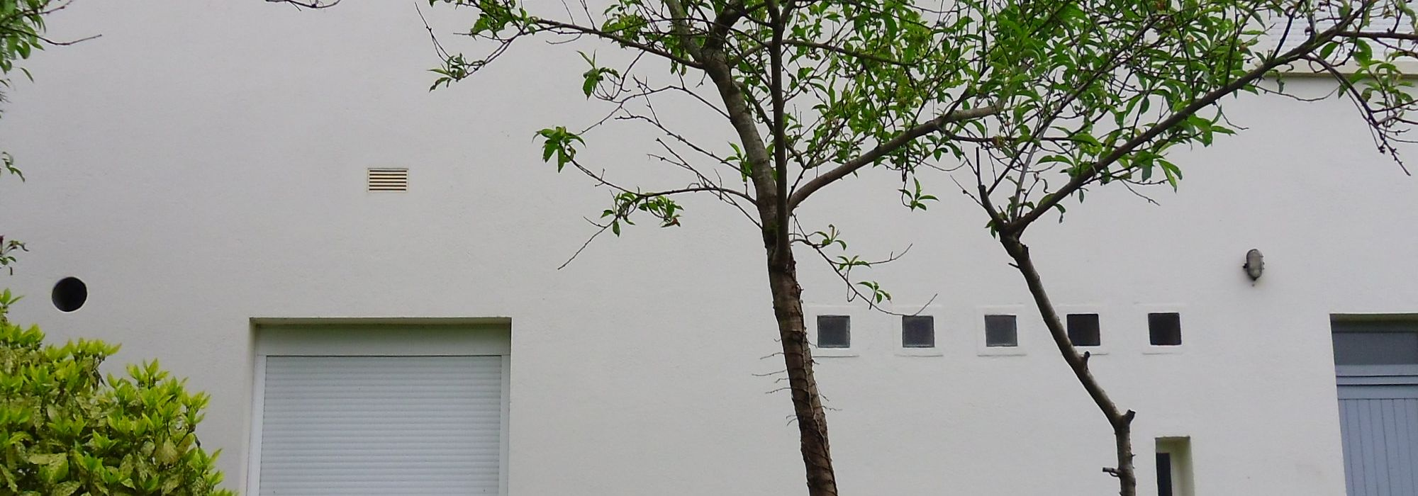 SAINT AVERTIN – Maison 4 chambres – 739m² de terrain