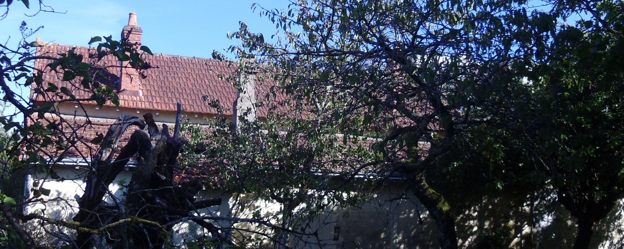 Maison ANCIENNE SUR TERRAIN A FORT POTENTIEL